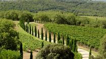 Private Half-Day Tour of Montalcino and Crete Senesi from Siena, Siena, Day Trips