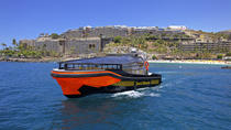 Güi Güi Beach and Marine Life Spotting Tour in Gran Canaria , Gran Canaria, Dolphin & ...