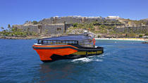 Whale and Dolphin Watching Tour in Gran Canaria , Gran Canaria, Dolphin & Whale Watching