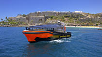 Whale and Dolphin Watching Tour op Gran Canaria, Gran Canaria, Dolphin & Whale Watching