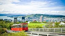 Visite touristique de Wellington et excursion au bord de la mer, Wellington, City Tours