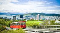 Wellington City Sights and Coast Tour, Wellington, Half-day Tours