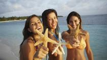 Catamaran Cruise to Saona Island from Punta Cana, Punta Cana, Full-day Tours