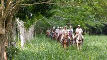 La Hacienda, La Romana, Day Trips