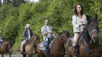 Samaná Mega Adventure: Horseback Riding, Swimming at El Limón Waterfall and Ziplining,...