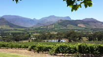Cape of Good Hope and Cape Winelands Day Tour from Cape Town, Cape Town, Private Day Trips
