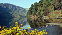 Tour di Wicklow, Powerscourt e Glendalough da Dublino, Dublino, Tour di una giornata