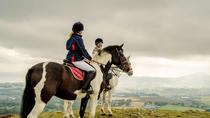 Wicklow Day Trip with Horse Riding Including Glendalough Tour from Dublin, Dublin, Day Trips