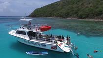 Scuba Dive from Ceiba, Fajardo, Scuba Diving
