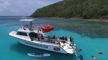 Vieques Island Scuba Dive Tour, Fajardo, Scuba Diving