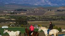 Private Tour: Cape Winelands with Wine Tastings from Cape Town, Cape Town, Private Sightseeing Tours