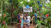 Bird Park General Admission Ticket and Tour, Foz do Iguacu, null