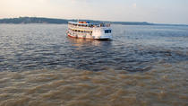 Rio Negro Cruise from Manaus to the Amazon River, Manaus, Day Trips