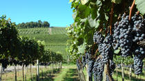 Wineries of the South, Maria Fumaça Train and Italian Epic Park, Gramado, Wine Tasting & ...
