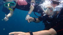 Snorkeling Trip, Las Terrenas, 4WD, ATV & Off-Road Tours