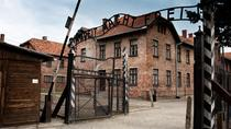 Full-Day Tour with Guided Visits to Auschwitz-Birkenau and Wieliczka Salt Mine from Krakow, Cracovia