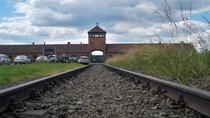 Museum Auschwitz-Birkenau Tour from Krakow with an English Speaking Guide, Krakow, Historical & ...
