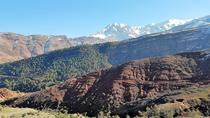 Marrakech to Imlil Valley Tour with Lunch and Guided Trek, Marrakech, Day Trips