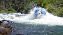 Whitewater Rafting 1 Day Trip South Fork American River - Gorge Run, Sacramento