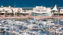 Alicante Paella Lunch and Live Flamenco Show, Alicante, Dining Experiences