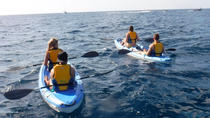 Guided Kayak Tour and Paella Lunch at the Beach in Valencia, Valencia