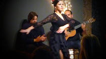 Private Valencia City Tour by Bus with Tapas and Flamenco Show, Valencia, Dining Experiences