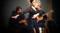 Small Group Valencia Tour by Bus with Tapas and Flamenco Show, Valencia, Dining Experiences