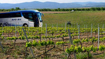 Valencia Wine Tour with Tasting and Lunch for Groups, Valencia, Wine Tasting & Winery Tours