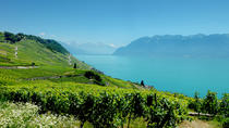 Swiss Riviera Private Tour : Lausanne, Vevey, Montreux, Chillon, Geneva, Private Sightseeing Tours