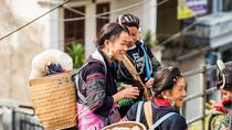 Full-Day Bac Ha Cultural and Market Tour from Sapa, Northern Vietnam, null