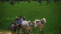 Siem Reap Local Life and Community Village Full-Day Tour, Siem Reap, Day Trips