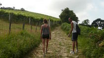 Camino de Santiago trail Private trekking tour along the coast, San Sebastian, Cultural Tours