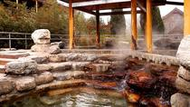 Private Day Trip: Outdoor Hot Spring with Massage plus Juyongguan Pass Visiting, Beijing, Private ...