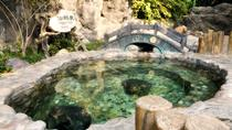 Private Day Trip to Mutianyu Great Wall with Outdoor Hot Spring Experience, Beijing, Thermal Spas & ...
