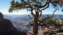 Caminhada no Grand Canyon com Sedona e Flagstaff Hotel Pickup, Sedona, Day Trips