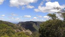 Inside the Greater Blue Mountains World Heritage - A Private Wildlife Safari Overnight