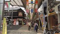 Walking Small-Group Nagoya City Tour