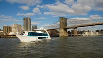 New York City Holiday Lunch Cruise, New York City, Day Cruises