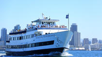 San Diego One Hour Harbor Cruise and Sea Lion Adventure, San Diego, Day Cruises