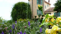 Panoramic Audio-guided Tour to Antibes Cannes Grasse and Gourdon from Nice, Nice, Day Trips