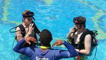 PADI Discover Scuba Diving Course in Bayahibe, La Romana, Sunset Cruises