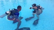PADI Open Water Diver Course in Bayahibe, La Romana, Scuba Diving