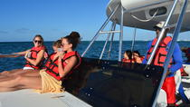 Punta Cana Sunset Snorkeling Cruise , Punta Cana, Snorkeling