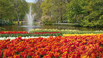 Amsterdam Combo: Van Gogh Museum and Canal Cruise with Optional Skip-the-Line Keukenhof Gardens, ...