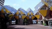 Visit Rotterdam, Delft and the Hague with luxury minivan, Amsterdam, Bus & Minivan Tours