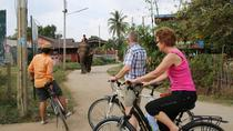 Colors of Ayutthaya Full-Day Bike Tour, Central Thailand, Bike & Mountain Bike Tours