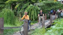 Half-Day Ayutthaya City Cultural Bike Tour, Central Thailand, Bike & Mountain Bike Tours