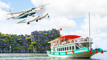 Luxury Tour: Halong Bay Seaplane and Cruise from Hanoi, Hanoi, Air Tours