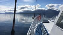Polar Fishing Adventure from Tromso, Tromso, Night Tours