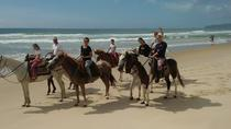 Riding on the Beach, Florianopolis, Horseback Riding